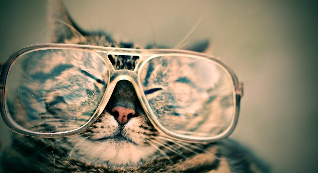 nya glasögon